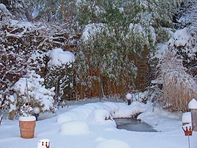gartenteich anlage selbst erstellt im winter mit schnee