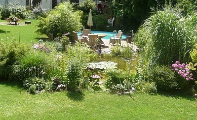 Gartenteich Blog - Teich von Sybille Kinne