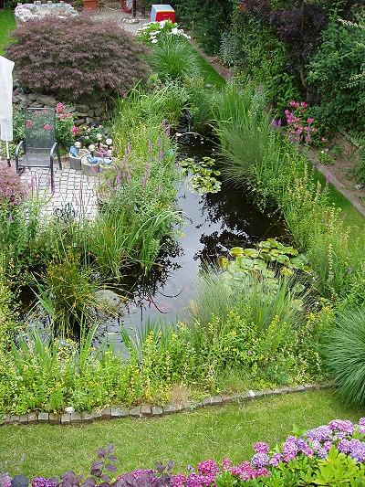 Gartenteich Umbau – Vom Pool zum Fischteich